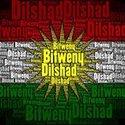 Dilshad Bitweny