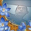 Fahmy AL Shreif