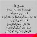 Sayed Kamel
