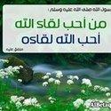 Shams Mohammed