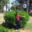 Hamed Alsharif