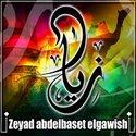 Ziad Abdelbaset
