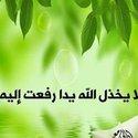 Heba Abo Bakr