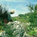 Redone Jabal