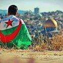 Mohamed Tigre