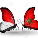 Yassine Z-n