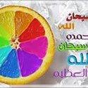 Al Romusaa Mahmoud