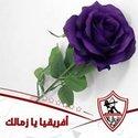 Walaa Abdel-Hafez