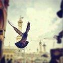Hady Muahmmad