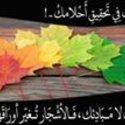 Ahmed Tunis