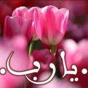 Hala Abdelfatah