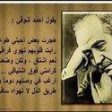 Ahmed Hachifa
