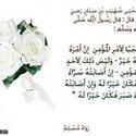 دينا الحريرى