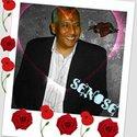 Senosy Ahmed