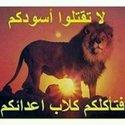 محمد بامرحول