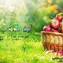 Amira Yosry