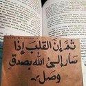 آلاء محمد