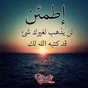 Eman Fadel