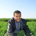Mohamed Belhouda