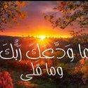 Hany Ahmed