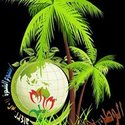 Nasr Hosny