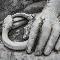 F.H's avatar