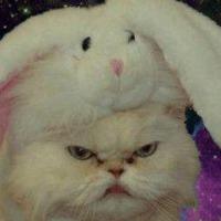 jessie skorupski's avatar