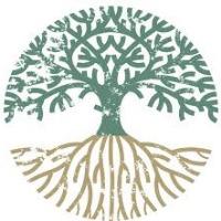 xavi's avatar
