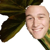 Sonofadonkey's avatar