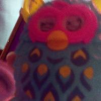 Nyan Crow's avatar
