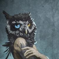 Deniz's avatar