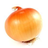 An Onion's avatar