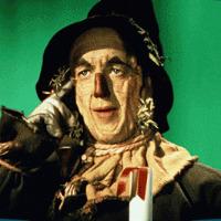 Thomas Plant's avatar