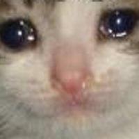 Ane's avatar