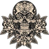 David Verastegui's avatar