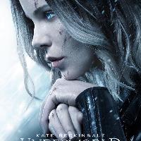 Sara Snow's avatar