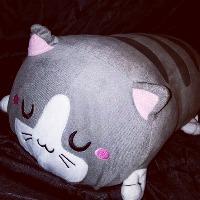 Friendly Thunderdragon's avatar