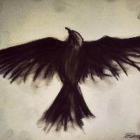 Adrien.'s avatar