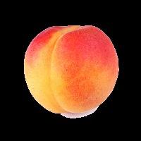 Nyai Sz's avatar
