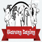 Warung Daging