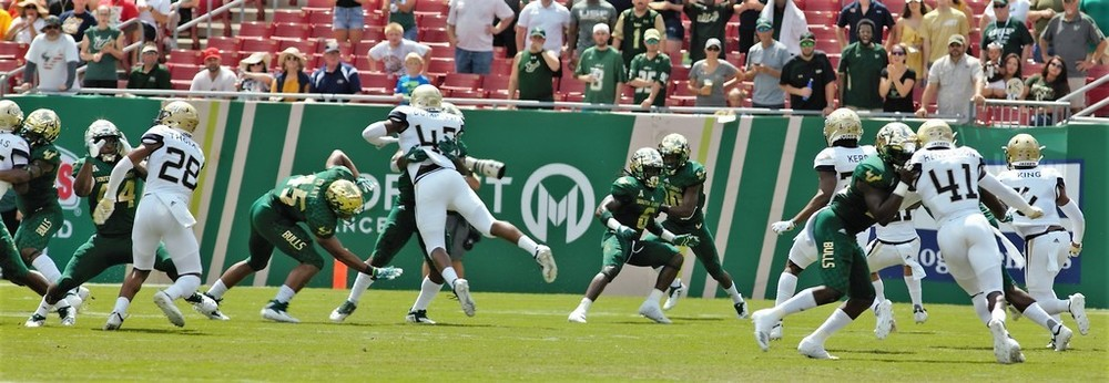 South Florida Bulls vs Georgia Tech 2018 Bulls Gallery  0004.jpg