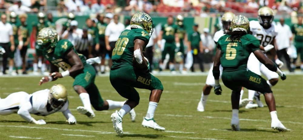South Florida Bulls vs Georgia Tech 2018 Bulls Gallery  0060.jpg