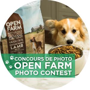 Open farm photo contest header icon v2 ca icon2