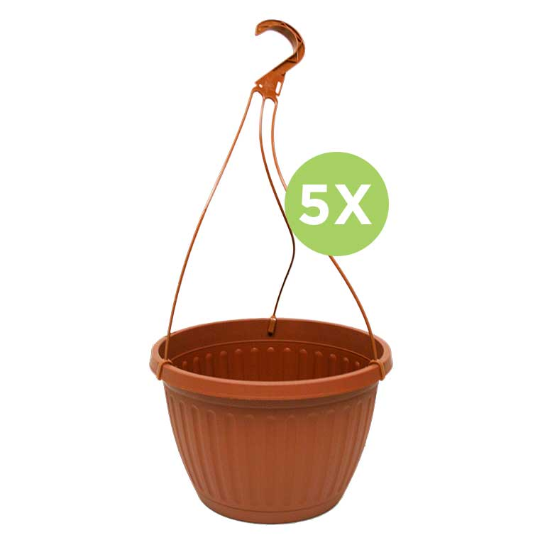 Hanging planters bundle