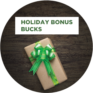 Holiday bonus bucks 2016 icon v1 us