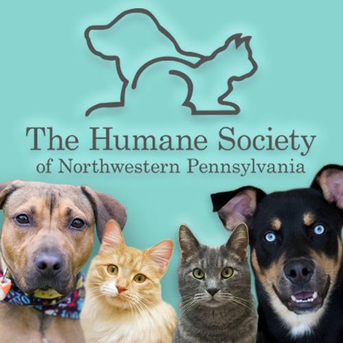 humane society erie