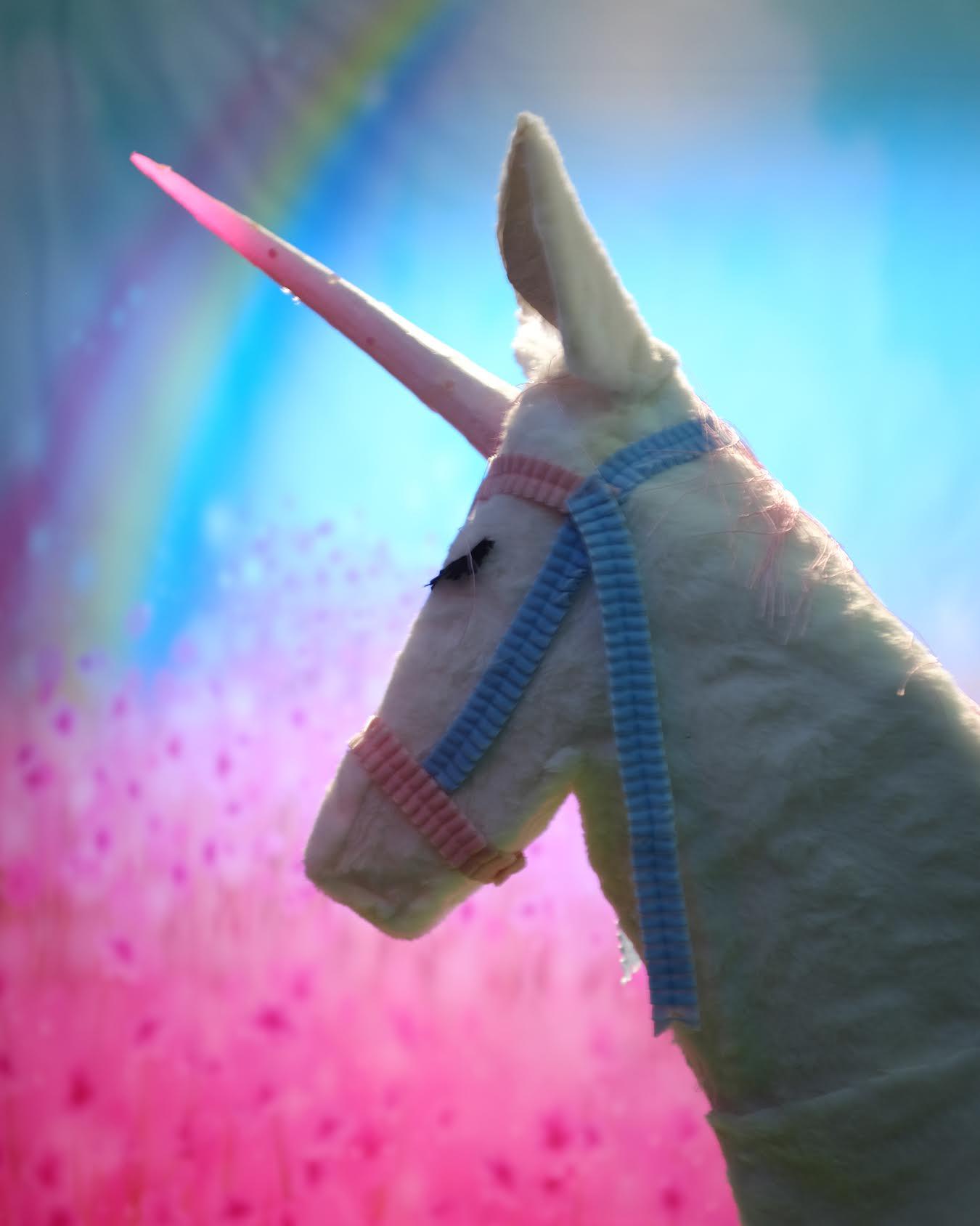 SDB_Unicorn.jpg