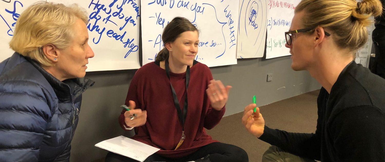 Meta Dynamics™ II: Taking Our Coaching to the Next Level