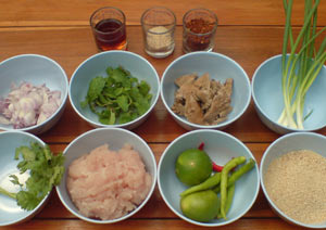 Laab-Gai-Ingredients