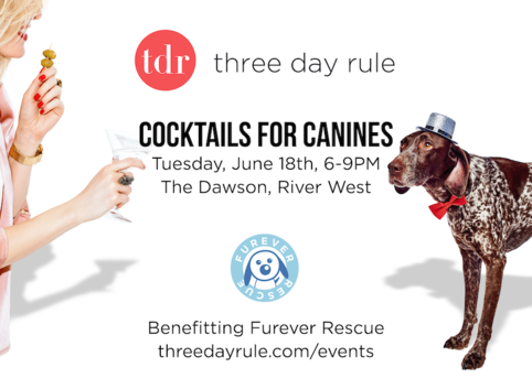 Cocktailsforcanines chicago 2019